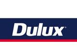 dulux painters